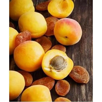 "Саженец абрикоса ""Леала"""
